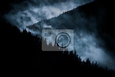 Постер Ночь Страшно туманные горы ночьюНочь<br>Постер на холсте или бумаге. Любого нужного вам размера. В раме или без. Подвес в комплекте. Трехслойная надежная упаковка. Доставим в любую точку России. Вам осталось только повесить картину на стену!<br>