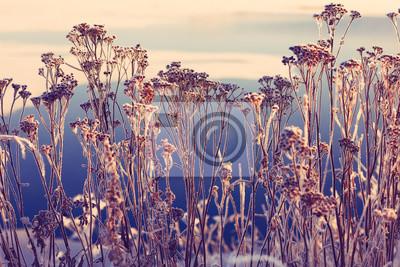 Постер Утро Морозное зимнее утро пейзаж природа солнечногоУтро<br>Постер на холсте или бумаге. Любого нужного вам размера. В раме или без. Подвес в комплекте. Трехслойная надежная упаковка. Доставим в любую точку России. Вам осталось только повесить картину на стену!<br>