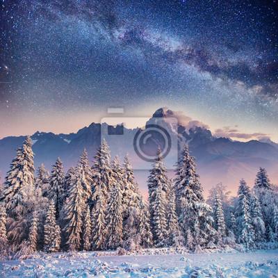 Постер Ночь Молочные Звездный путь в зимнем лесу. Карпаты, Украина, ЕвропаНочь<br>Постер на холсте или бумаге. Любого нужного вам размера. В раме или без. Подвес в комплекте. Трехслойная надежная упаковка. Доставим в любую точку России. Вам осталось только повесить картину на стену!<br>