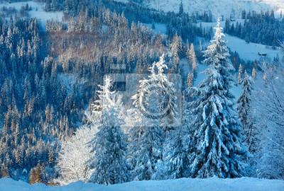 Постер Вечер Зимний ландшафт Карпатских гор, Украина.Вечер<br>Постер на холсте или бумаге. Любого нужного вам размера. В раме или без. Подвес в комплекте. Трехслойная надежная упаковка. Доставим в любую точку России. Вам осталось только повесить картину на стену!<br>