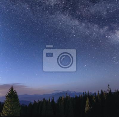 Постер Ночь Ночное небо с Млечным путем в горный пейзажНочь<br>Постер на холсте или бумаге. Любого нужного вам размера. В раме или без. Подвес в комплекте. Трехслойная надежная упаковка. Доставим в любую точку России. Вам осталось только повесить картину на стену!<br>
