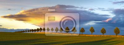 Постер Вечер Красивые грозовые облака в вечернем небеВечер<br>Постер на холсте или бумаге. Любого нужного вам размера. В раме или без. Подвес в комплекте. Трехслойная надежная упаковка. Доставим в любую точку России. Вам осталось только повесить картину на стену!<br>