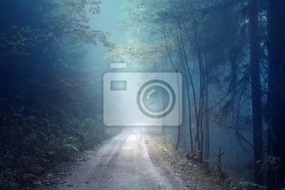 Постер Туман Мечтательный вечер осенний цвет туманный лесной дороге. Страшные темно-синий зеленый цветные местности леса.Туман<br>Постер на холсте или бумаге. Любого нужного вам размера. В раме или без. Подвес в комплекте. Трехслойная надежная упаковка. Доставим в любую точку России. Вам осталось только повесить картину на стену!<br>