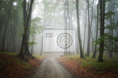 Постер Туман Дорога через туманный лес фонТуман<br>Постер на холсте или бумаге. Любого нужного вам размера. В раме или без. Подвес в комплекте. Трехслойная надежная упаковка. Доставим в любую точку России. Вам осталось только повесить картину на стену!<br>