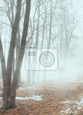 Постер Дождь Деревья в темном туманном лесу ландшафтаДождь<br>Постер на холсте или бумаге. Любого нужного вам размера. В раме или без. Подвес в комплекте. Трехслойная надежная упаковка. Доставим в любую точку России. Вам осталось только повесить картину на стену!<br>