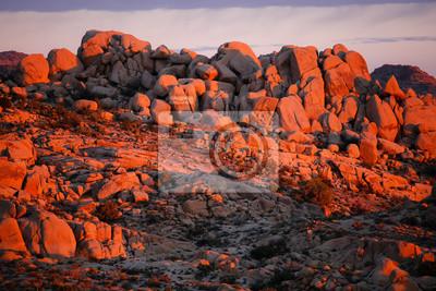 Постер Рассвет Рассвет в пустыне Джошуа-три, КалифорнияРассвет<br>Постер на холсте или бумаге. Любого нужного вам размера. В раме или без. Подвес в комплекте. Трехслойная надежная упаковка. Доставим в любую точку России. Вам осталось только повесить картину на стену!<br>