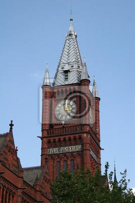 Постер Ливерпуль Liverpool University башня с часамиЛиверпуль<br>Постер на холсте или бумаге. Любого нужного вам размера. В раме или без. Подвес в комплекте. Трехслойная надежная упаковка. Доставим в любую точку России. Вам осталось только повесить картину на стену!<br>