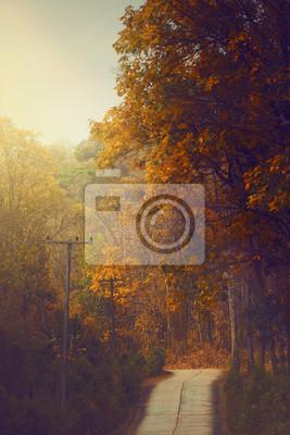 Постер Рассвет Весенний пейзаж асфальтированная дорога, рядом лес ранним утромРассвет<br>Постер на холсте или бумаге. Любого нужного вам размера. В раме или без. Подвес в комплекте. Трехслойная надежная упаковка. Доставим в любую точку России. Вам осталось только повесить картину на стену!<br>