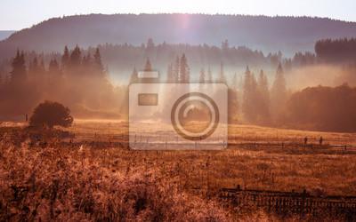 Постер Туман Утром солнечные лучи в тумане горы домТуман<br>Постер на холсте или бумаге. Любого нужного вам размера. В раме или без. Подвес в комплекте. Трехслойная надежная упаковка. Доставим в любую точку России. Вам осталось только повесить картину на стену!<br>