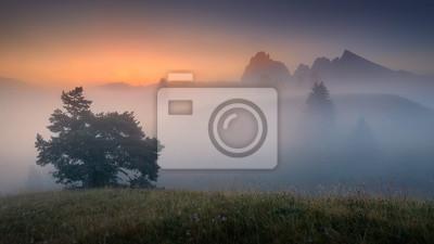 Постер Туман Туманные горные пейзажи на восход солнца в АльпахТуман<br>Постер на холсте или бумаге. Любого нужного вам размера. В раме или без. Подвес в комплекте. Трехслойная надежная упаковка. Доставим в любую точку России. Вам осталось только повесить картину на стену!<br>