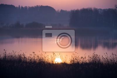 Постер Туман Живописный туманный восход солнца над лесным озеромТуман<br>Постер на холсте или бумаге. Любого нужного вам размера. В раме или без. Подвес в комплекте. Трехслойная надежная упаковка. Доставим в любую точку России. Вам осталось только повесить картину на стену!<br>