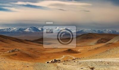 Постер Монголия Монгольский пейзажМонголия<br>Постер на холсте или бумаге. Любого нужного вам размера. В раме или без. Подвес в комплекте. Трехслойная надежная упаковка. Доставим в любую точку России. Вам осталось только повесить картину на стену!<br>
