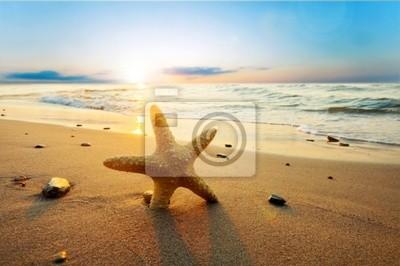 Морские звезды на пляже, 30x20 см, на бумагеМорские звезды<br>Постер на холсте или бумаге. Любого нужного вам размера. В раме или без. Подвес в комплекте. Трехслойная надежная упаковка. Доставим в любую точку России. Вам осталось только повесить картину на стену!<br>
