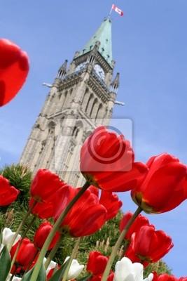 Постер Города и карты Тюльпан в парламенте Канады в Канаде., 20x30 см, на бумагеОттава<br>Постер на холсте или бумаге. Любого нужного вам размера. В раме или без. Подвес в комплекте. Трехслойная надежная упаковка. Доставим в любую точку России. Вам осталось только повесить картину на стену!<br>