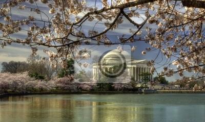 Постер Вашингтон Мемориал Джефферсона во Cherry Blossom FestivalВашингтон<br>Постер на холсте или бумаге. Любого нужного вам размера. В раме или без. Подвес в комплекте. Трехслойная надежная упаковка. Доставим в любую точку России. Вам осталось только повесить картину на стену!<br>
