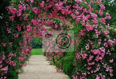 Постер Розы Беседка с розовые цветущие розыРозы<br>Постер на холсте или бумаге. Любого нужного вам размера. В раме или без. Подвес в комплекте. Трехслойная надежная упаковка. Доставим в любую точку России. Вам осталось только повесить картину на стену!<br>