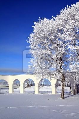 Постер Великий Новгород Дерево в снегу возле белой стеныВеликий Новгород<br>Постер на холсте или бумаге. Любого нужного вам размера. В раме или без. Подвес в комплекте. Трехслойная надежная упаковка. Доставим в любую точку России. Вам осталось только повесить картину на стену!<br>