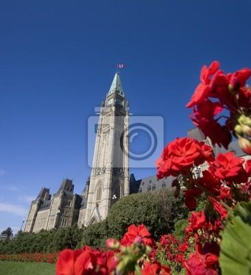 Постер Оттава Парламент Канады и красные цветы на переднем плане, 20x22 см, на бумагеОттава<br>Постер на холсте или бумаге. Любого нужного вам размера. В раме или без. Подвес в комплекте. Трехслойная надежная упаковка. Доставим в любую точку России. Вам осталось только повесить картину на стену!<br>