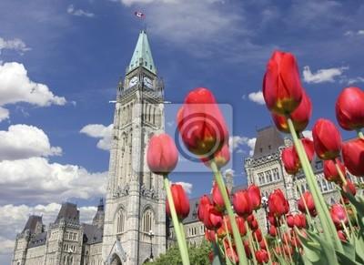 Парламент Канады, Фестиваль тюльпанов, Оттава, 27x20 см, на бумагеОттава<br>Постер на холсте или бумаге. Любого нужного вам размера. В раме или без. Подвес в комплекте. Трехслойная надежная упаковка. Доставим в любую точку России. Вам осталось только повесить картину на стену!<br>