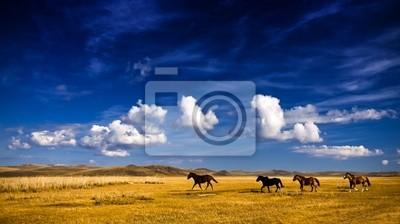 Постер Монголия Лошадь, на лугахМонголия<br>Постер на холсте или бумаге. Любого нужного вам размера. В раме или без. Подвес в комплекте. Трехслойная надежная упаковка. Доставим в любую точку России. Вам осталось только повесить картину на стену!<br>