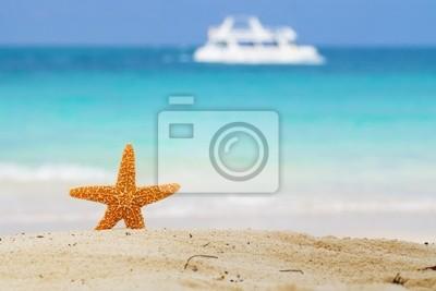 Морские звезды на пляж, синее море и белый пароход, 30x20 см, на бумагеМорские звезды<br>Постер на холсте или бумаге. Любого нужного вам размера. В раме или без. Подвес в комплекте. Трехслойная надежная упаковка. Доставим в любую точку России. Вам осталось только повесить картину на стену!<br>