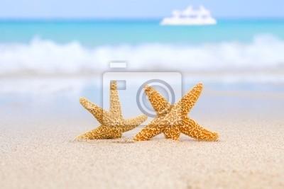 Две морские звезды на пляж, синее море и белый пароход, 30x20 см, на бумагеМорские звезды<br>Постер на холсте или бумаге. Любого нужного вам размера. В раме или без. Подвес в комплекте. Трехслойная надежная упаковка. Доставим в любую точку России. Вам осталось только повесить картину на стену!<br>