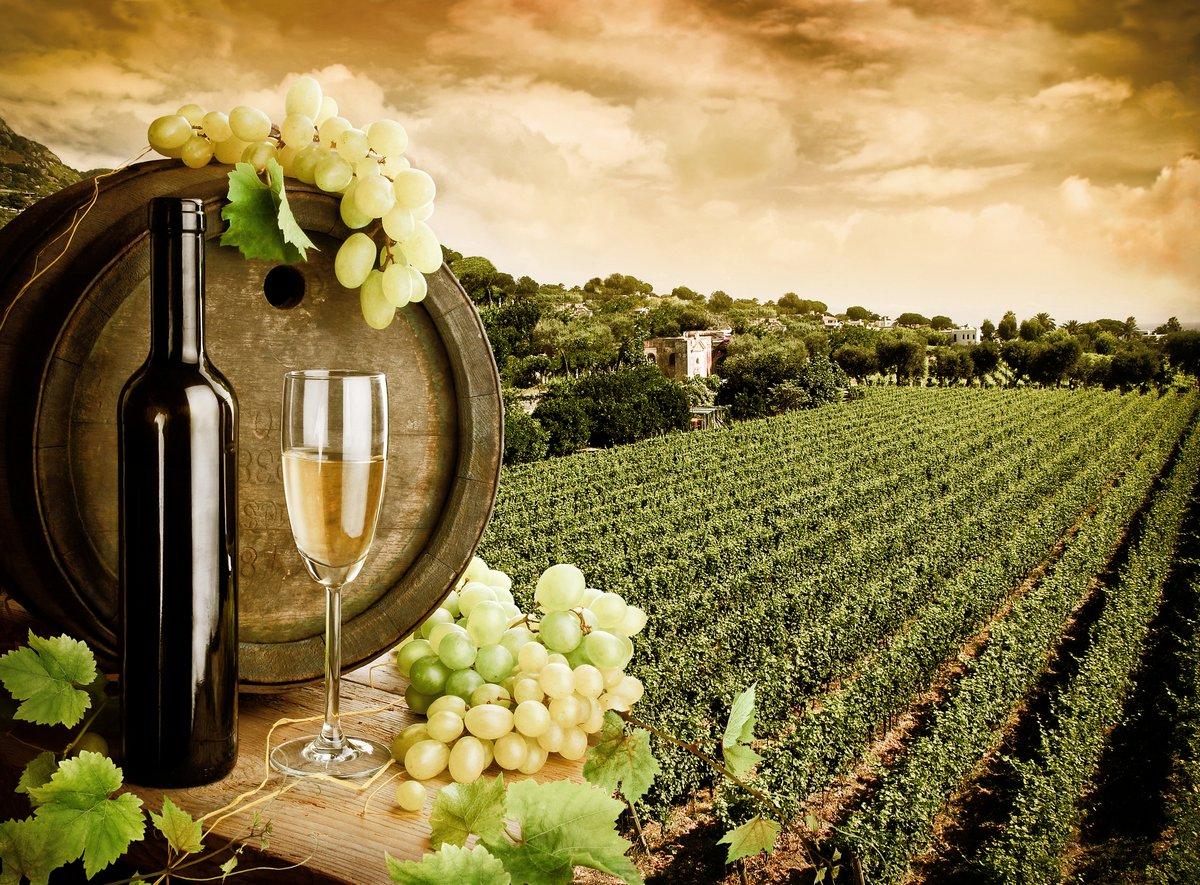 Постер Вино