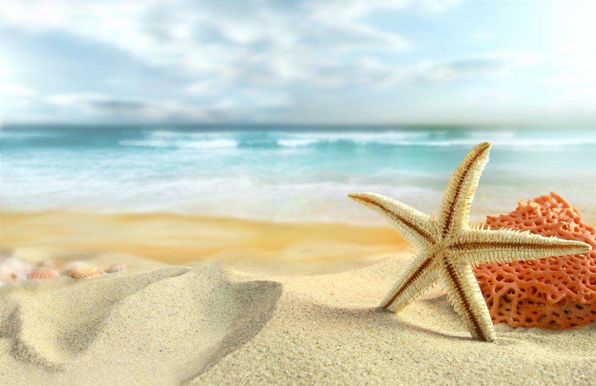 """Постер Лето """"Морские звезды на Пляже"""" от Artwall"""