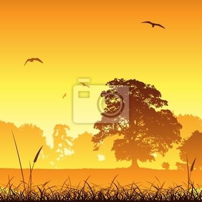 Постер Пейзаж равнинный Страна лугу пейзаж с деревьев и птицПейзаж равнинный<br>Постер на холсте или бумаге. Любого нужного вам размера. В раме или без. Подвес в комплекте. Трехслойная надежная упаковка. Доставим в любую точку России. Вам осталось только повесить картину на стену!<br>