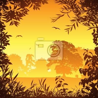 Страна лугу пейзаж с деревьев и птиц, 20x20 см, на бумагеПейзаж равнинный<br>Постер на холсте или бумаге. Любого нужного вам размера. В раме или без. Подвес в комплекте. Трехслойная надежная упаковка. Доставим в любую точку России. Вам осталось только повесить картину на стену!<br>