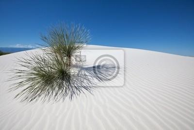 Постер Пейзаж песчаный Белая пустыняПейзаж песчаный<br>Постер на холсте или бумаге. Любого нужного вам размера. В раме или без. Подвес в комплекте. Трехслойная надежная упаковка. Доставим в любую точку России. Вам осталось только повесить картину на стену!<br>