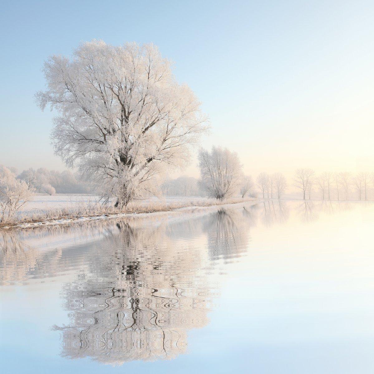 Постер Зима Морозная зима дерево на фоне голубого неба с отражением в водеЗима<br>Постер на холсте или бумаге. Любого нужного вам размера. В раме или без. Подвес в комплекте. Трехслойная надежная упаковка. Доставим в любую точку России. Вам осталось только повесить картину на стену!<br>