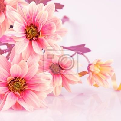 Постер Эхинацея Pink daisy с золотой лентойЭхинацея<br>Постер на холсте или бумаге. Любого нужного вам размера. В раме или без. Подвес в комплекте. Трехслойная надежная упаковка. Доставим в любую точку России. Вам осталось только повесить картину на стену!<br>
