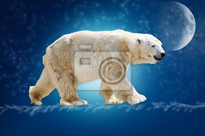 Постер Медведи Наши polairegМедведи<br>Постер на холсте или бумаге. Любого нужного вам размера. В раме или без. Подвес в комплекте. Трехслойная надежная упаковка. Доставим в любую точку России. Вам осталось только повесить картину на стену!<br>