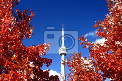 Постер Торонто CN Tower и осенние КраскиТоронто<br>Постер на холсте или бумаге. Любого нужного вам размера. В раме или без. Подвес в комплекте. Трехслойная надежная упаковка. Доставим в любую точку России. Вам осталось только повесить картину на стену!<br>