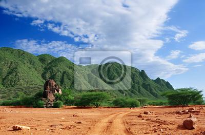 Постер Африканский пейзаж Африканский ПейзажАфриканский пейзаж<br>Постер на холсте или бумаге. Любого нужного вам размера. В раме или без. Подвес в комплекте. Трехслойная надежная упаковка. Доставим в любую точку России. Вам осталось только повесить картину на стену!<br>