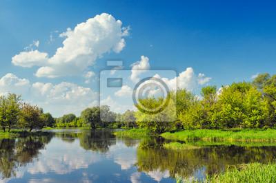 Постер Польша Красивый пейзаж обои с паводковых вод из рек Нарева.Польша<br>Постер на холсте или бумаге. Любого нужного вам размера. В раме или без. Подвес в комплекте. Трехслойная надежная упаковка. Доставим в любую точку России. Вам осталось только повесить картину на стену!<br>