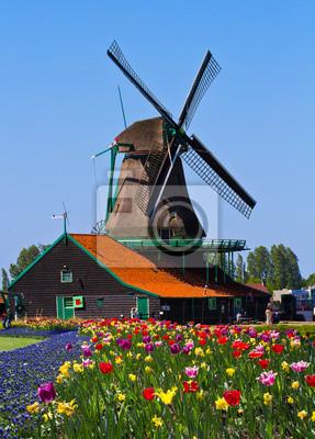 Постер Нидерланды Мельницы в ГолландииНидерланды<br>Постер на холсте или бумаге. Любого нужного вам размера. В раме или без. Подвес в комплекте. Трехслойная надежная упаковка. Доставим в любую точку России. Вам осталось только повесить картину на стену!<br>