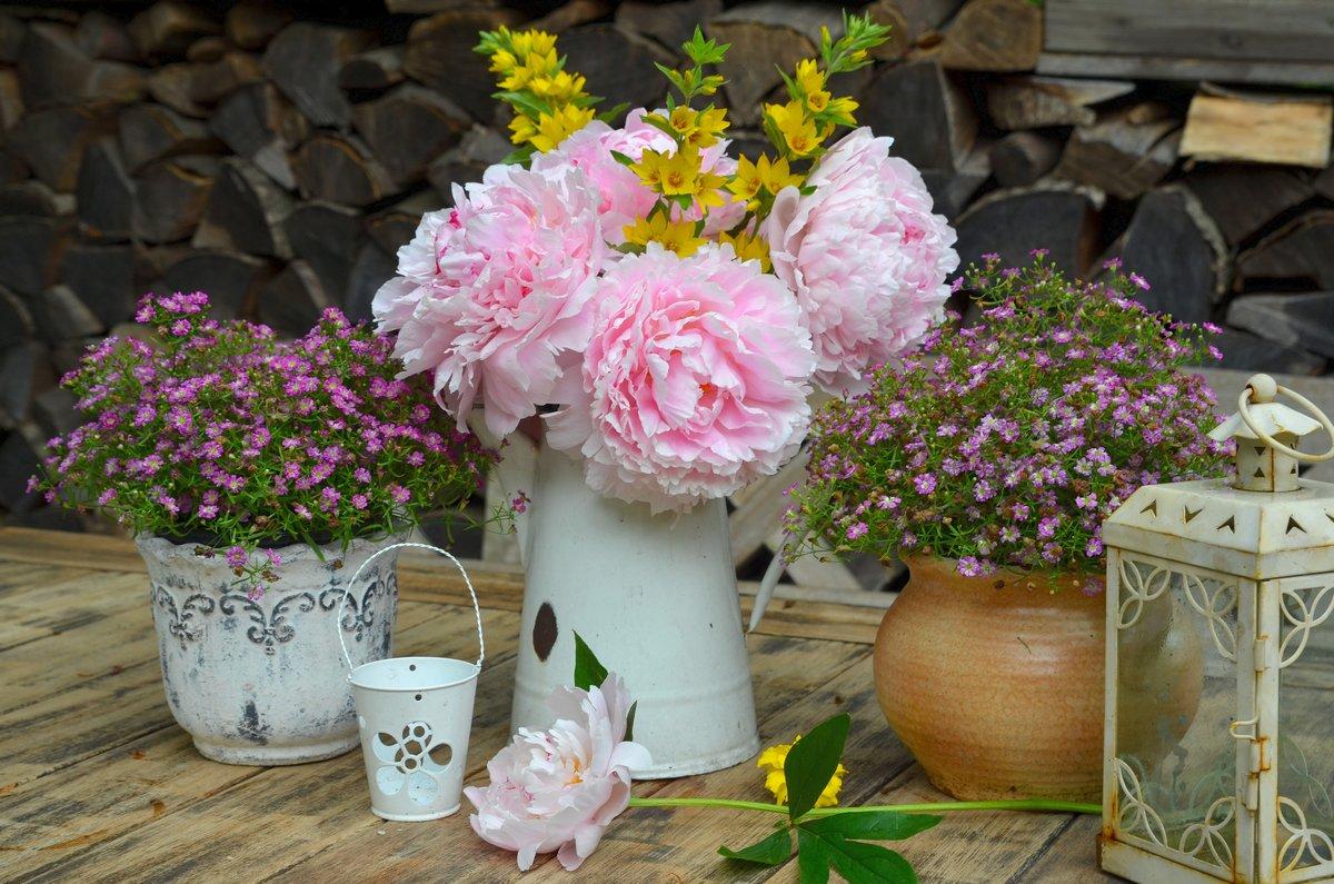 Постер Пионы Роза Garten Dekoration цветы в TischПионы<br>Постер на холсте или бумаге. Любого нужного вам размера. В раме или без. Подвес в комплекте. Трехслойная надежная упаковка. Доставим в любую точку России. Вам осталось только повесить картину на стену!<br>