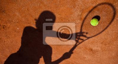 Постер Спорт Тень теннисист в действие на Теннисный корт, 37x20 см, на бумагеБольшой теннис<br>Постер на холсте или бумаге. Любого нужного вам размера. В раме или без. Подвес в комплекте. Трехслойная надежная упаковка. Доставим в любую точку России. Вам осталось только повесить картину на стену!<br>