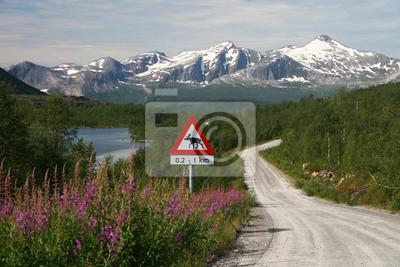 Постер Норвегия Schotterpist в NornskandinavienНорвегия<br>Постер на холсте или бумаге. Любого нужного вам размера. В раме или без. Подвес в комплекте. Трехслойная надежная упаковка. Доставим в любую точку России. Вам осталось только повесить картину на стену!<br>