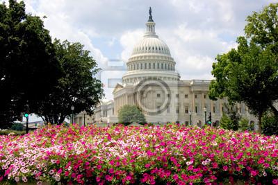 Постер Вашингтон НАМ Капитолия с летних цветовВашингтон<br>Постер на холсте или бумаге. Любого нужного вам размера. В раме или без. Подвес в комплекте. Трехслойная надежная упаковка. Доставим в любую точку России. Вам осталось только повесить картину на стену!<br>
