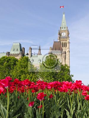Постер Оттава Парламент Канады, красные тюльпаны, ОттаваОттава<br>Постер на холсте или бумаге. Любого нужного вам размера. В раме или без. Подвес в комплекте. Трехслойная надежная упаковка. Доставим в любую точку России. Вам осталось только повесить картину на стену!<br>