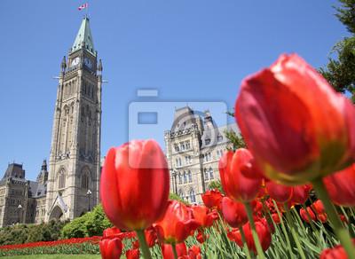 Постер Города и карты Парламент Канады, красные тюльпаны, Оттава, 27x20 см, на бумагеОттава<br>Постер на холсте или бумаге. Любого нужного вам размера. В раме или без. Подвес в комплекте. Трехслойная надежная упаковка. Доставим в любую точку России. Вам осталось только повесить картину на стену!<br>