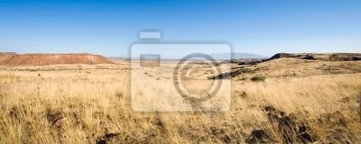 Постер Африканский пейзаж НамибияАфриканский пейзаж<br>Постер на холсте или бумаге. Любого нужного вам размера. В раме или без. Подвес в комплекте. Трехслойная надежная упаковка. Доставим в любую точку России. Вам осталось только повесить картину на стену!<br>