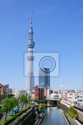 Постер Токио Tokyo Sky treeТокио<br>Постер на холсте или бумаге. Любого нужного вам размера. В раме или без. Подвес в комплекте. Трехслойная надежная упаковка. Доставим в любую точку России. Вам осталось только повесить картину на стену!<br>