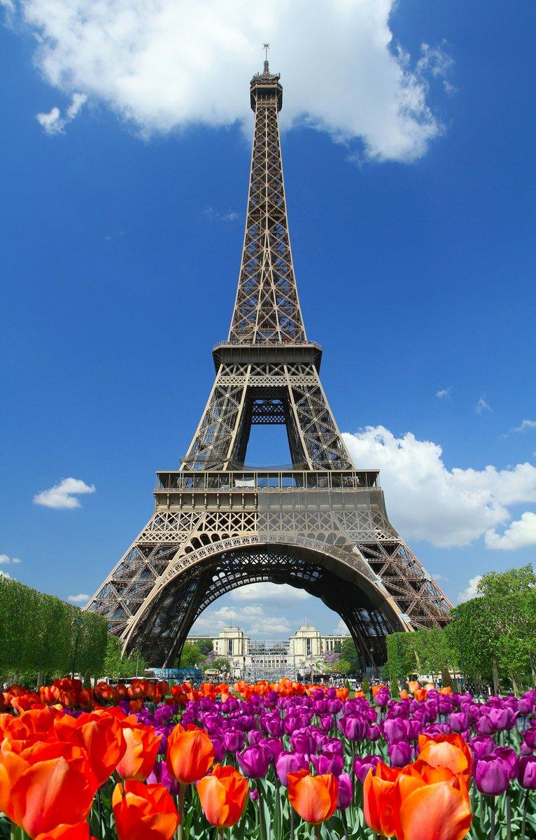 Постер Тюльпаны Tour Eiffel, parigiТюльпаны<br>Постер на холсте или бумаге. Любого нужного вам размера. В раме или без. Подвес в комплекте. Трехслойная надежная упаковка. Доставим в любую точку России. Вам осталось только повесить картину на стену!<br>