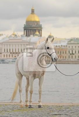 Прогулки по набережной Санкт-Петербурга, 20x30 см, на бумагеСанкт-Петербург<br>Постер на холсте или бумаге. Любого нужного вам размера. В раме или без. Подвес в комплекте. Трехслойная надежная упаковка. Доставим в любую точку России. Вам осталось только повесить картину на стену!<br>