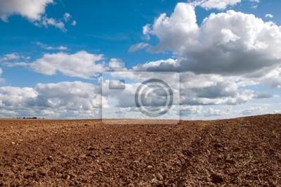 Постер Страны Ранней весной поле, голубое небо и белые облака пейзаж, 30x20 см, на бумагеБеларусь<br>Постер на холсте или бумаге. Любого нужного вам размера. В раме или без. Подвес в комплекте. Трехслойная надежная упаковка. Доставим в любую точку России. Вам осталось только повесить картину на стену!<br>