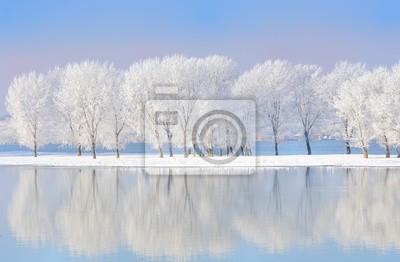 Постер Зима Зимние деревья, покрытые инеемЗима<br>Постер на холсте или бумаге. Любого нужного вам размера. В раме или без. Подвес в комплекте. Трехслойная надежная упаковка. Доставим в любую точку России. Вам осталось только повесить картину на стену!<br>